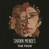(VIP PACKAGE Shawn Mendes) Gallery - ticket-ticketone-21939681319.jpg