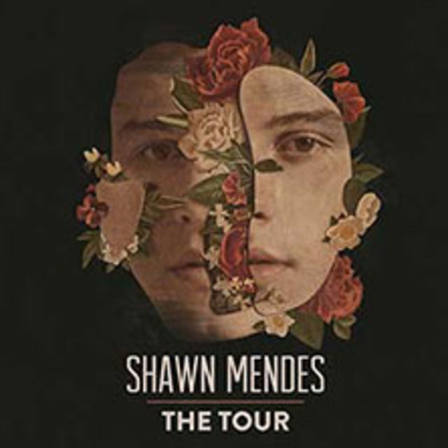 Photo of VIP PACKAGE Shawn Mendes