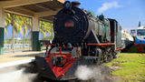 (Half-Day North Borneo Steam Engine Train from Kota Kinabalu) Gallery - Viator-11036P13.jpg