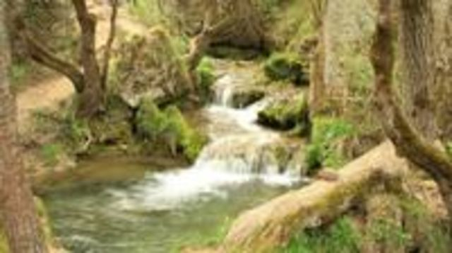 Photo of Private Day Tour to pure nature of Zlatibor Mountain