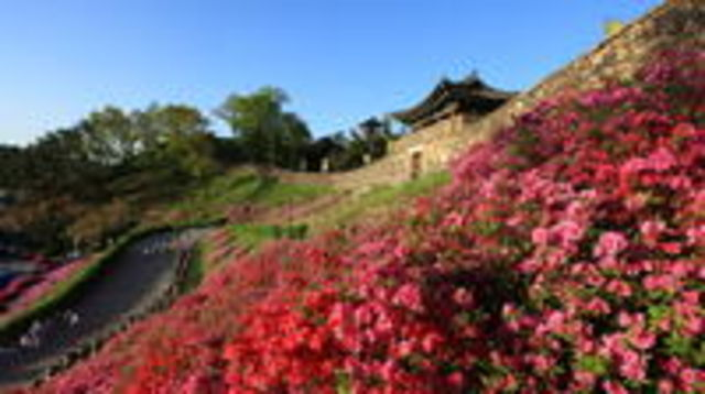 Photo of Western Korea 4-Day Tour Including Jeonju and Yeosu