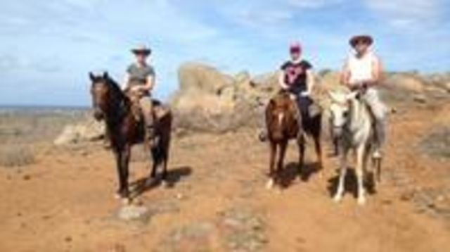 Photo of Aruba Private, 2 Hour Horseback Riding Tour For Advanced Riders