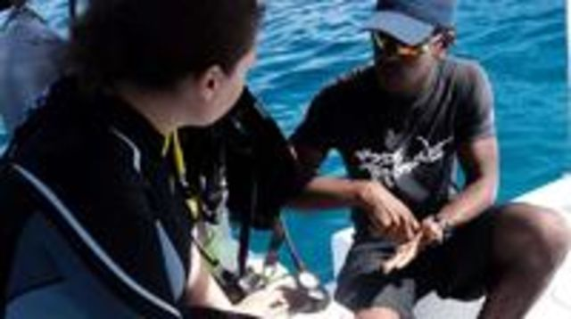 Photo of PADI Open Water Diver Certification in Carriacou