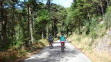 (Self-Guided Sintra E Bike Tour) Gallery - Viator-13984P2.jpg