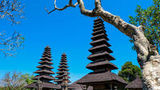 (Full-Day Bali Sightseeing Tour to Bedugul with Sunset at Tanah Lot Temple) Gallery - Viator-13994P10.jpg