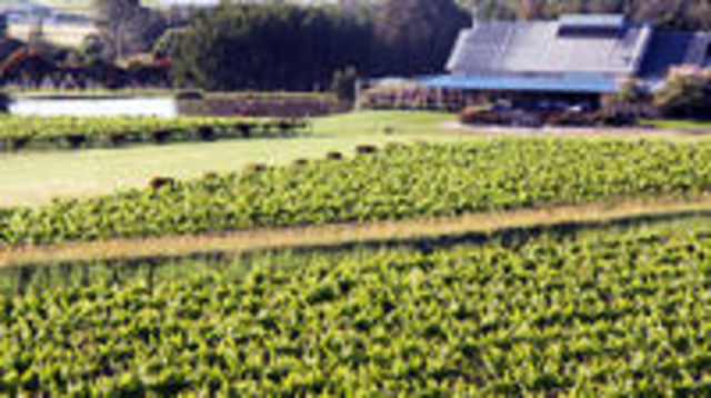 Photo of Private Hunter Valley Day Trip from Sydney Including Wine, Chocolate and Cheese Tasting