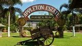 (Appleton Estate Rum Tour and Tasting from Kingston) Gallery - Viator-14302P115.jpg