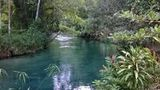 (Blue Hole and River Gully Rainforest Adventure Tour from Montego Bay) Gallery - Viator-14302P21.jpg