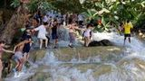 (Dunn's River Falls and Fern Gully Highlight Adventure Tour from Falmouth) Gallery - Viator-14302P9.jpg