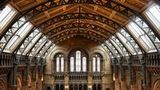 (Natural History Museum London Private Guided Tour) Gallery - Viator-40046P23.jpg