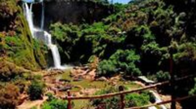 Photo of Full day trip to Ouzoud waterfalls from Marrakech