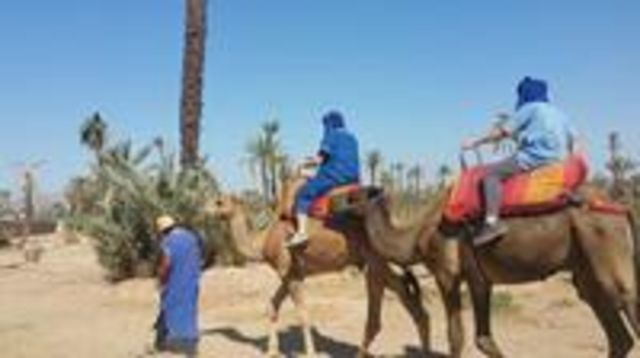 Photo of Camel ride in Marrakech including food taste and Moroccan tea