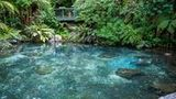 (Shore Excursion: Geothermal Geysers and Rainbow Springs Combo Including Lunch) Gallery - Viator-42230P26.jpg