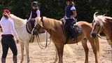 (Horse Back Riding in Chianti hillsides, Wine Tour and time to see San Gimignano) Gallery - Viator-47680P136.jpg