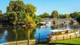 (Stratford-Upon-Avon and the Cotswold in One Day from London ) Gallery - Viator-47845P3.jpg