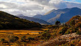 (Ring of Kerry Full-Day Guided Tour from Cork) Gallery - Viator-8962P19.jpg