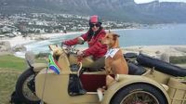 Photo of Full-Day Cape Peninsula Tour by Sidecar