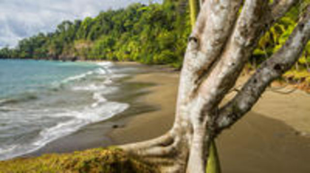 Photo of 8-Day Costa Rica Natural Wonders Adventure Hike