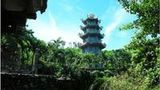 (Private Day Tour: Imperial City of Hue from Hoi An) Gallery - Viator-9463P29.jpg