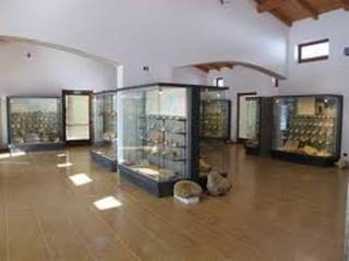 Photo of MUSEO GEOPALEONTOLOGICO DI CAMPOSILVANO