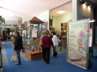 Museum Center for biodiversity Knowledge of the regional park of the Lattari Mountains - Castellammare di Stabia