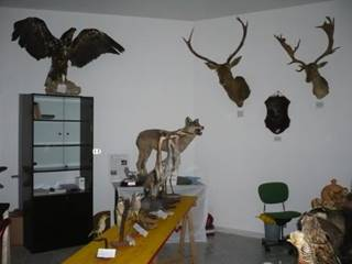 Photo of MUSEUM OF HUNTING TRADITIONS