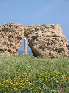 National Museum and Archaeological Park of Capo Colonna - Crotone