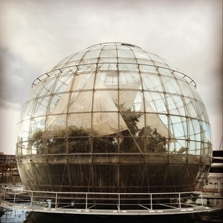 Photo of The biosphere